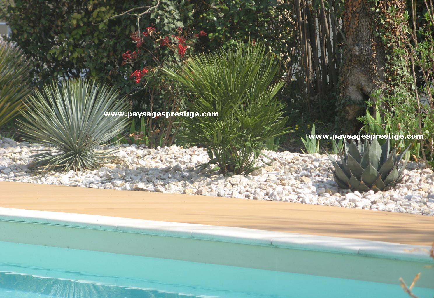 Paysagiste dr me ard che paysages prestige creations for Paysagiste jardin exotique